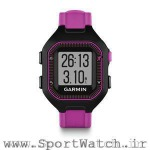 Forerunner 25 Black Purple Watch Only